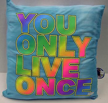 Image YOLO Autograph Pillow