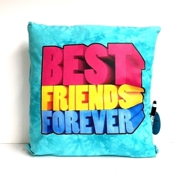 Image Best Friends Forever Autograph Pillow